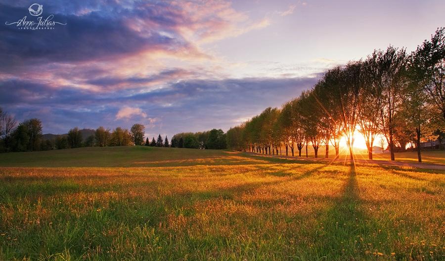Photo de paysage : quel type de lumière favoriser | Lumière de côté