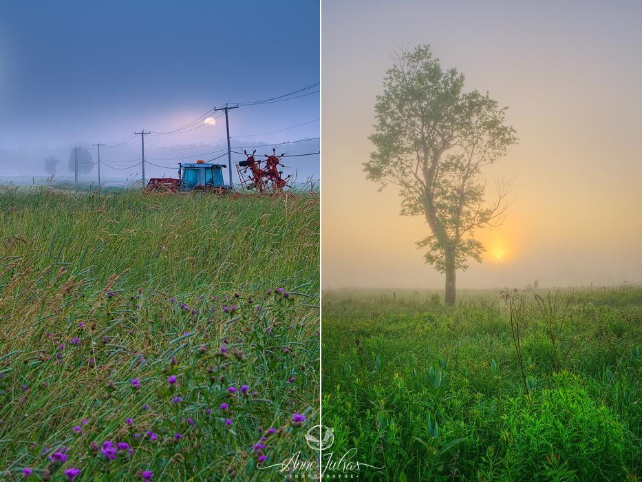 Photo de paysage : quel type de lumière favoriser | Brume