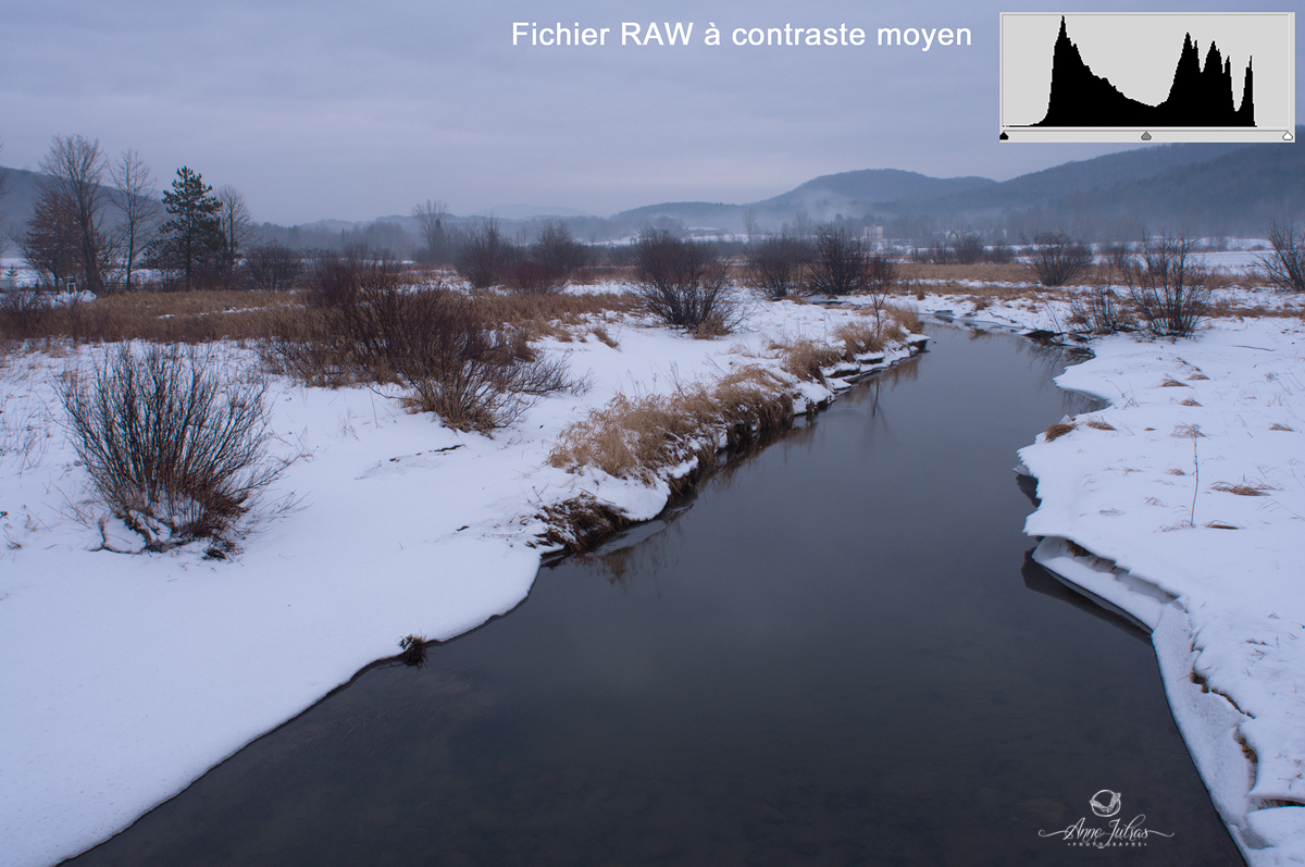 Fichier RAW contraste moyen
